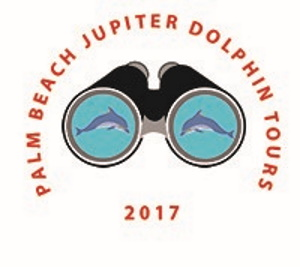 Palm Beach Jupiter Dolphins Tours