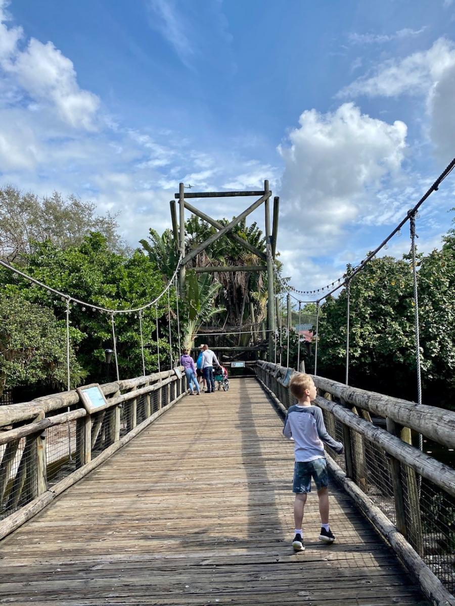 A bridge at the Palm Beach Zoo