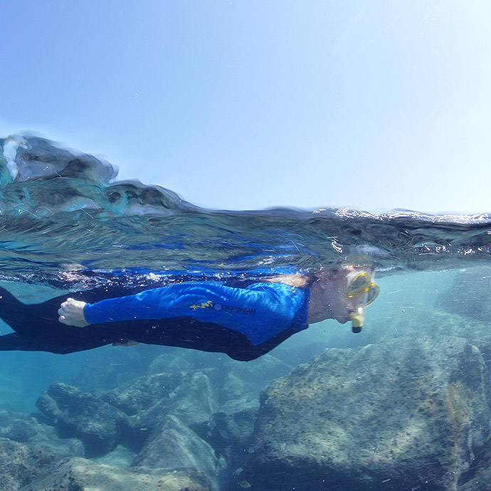 Diving Snorkeling In The Palm Beaches