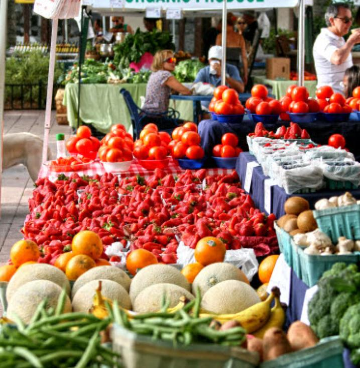 Markets, Gardens & More: Fall Has Arrived in The Palm Beaches