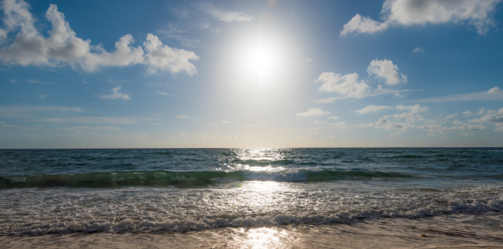A Flurry of Savings: Fall & Winter Packages Available in The Palm Beaches