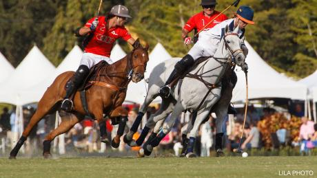 Polo en Wellington - Hogar del polo en Palm Beach