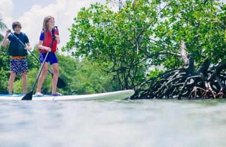 paddle boarding family