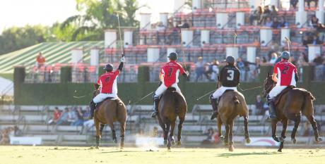 International Palm Beach Polo Club-Polo Horses in Action