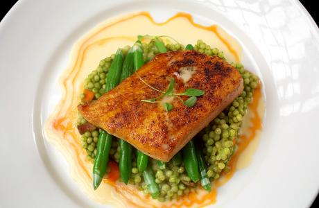 Salmon meal on a plate