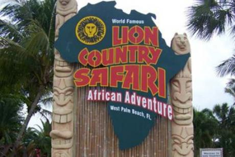 Lion Country Safari KOA