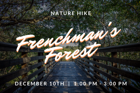 NATURE WALK-Frenchman's Forrest