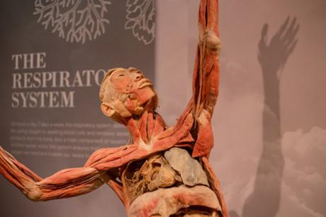 "Science Center ""Real Bodies"" Exhibition and Home 2 Suites by Hilton Promotion"