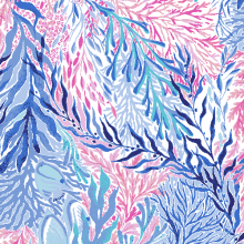 Amante de Lilly Pulitzer Beach