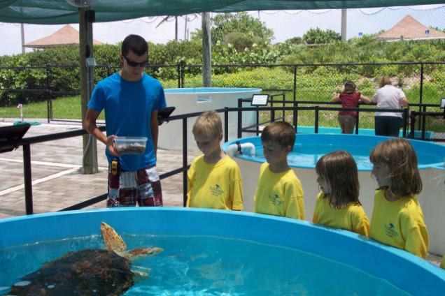 Loggerhead Marinelife Center