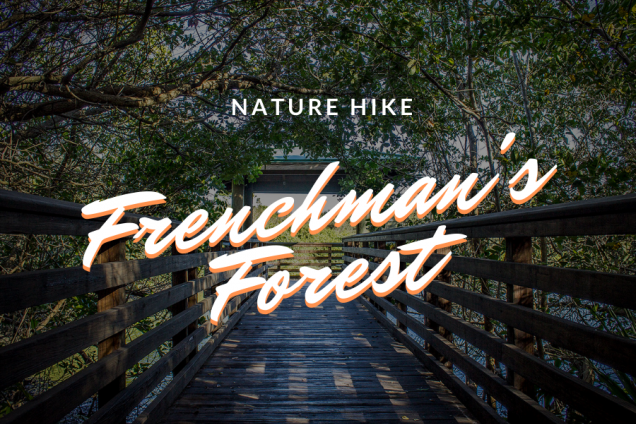 Nature Walk - Frenchman's Forest
