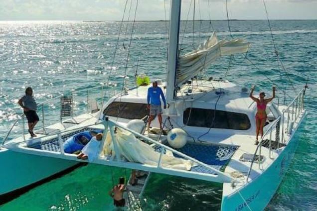 Palm Breeze - Sailing Swim Cruises, Raft Up Party
