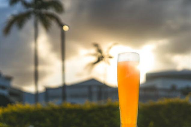 Stormhouse Brewing Beer Glass