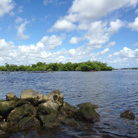 A view across Lake Worth Lagoon
