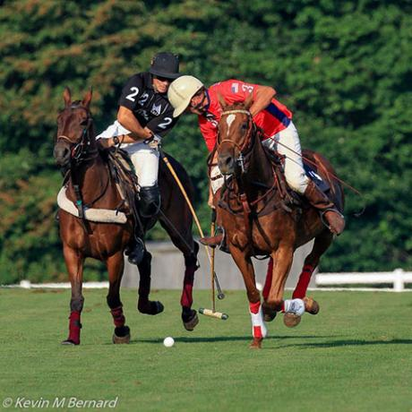 Polo in Palm Beach, Florida