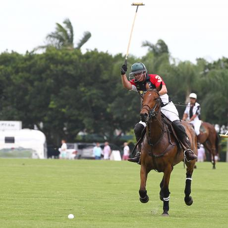 Gay Polo League