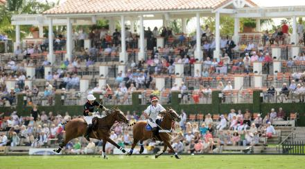 International Polo Club Palm Beach - Polo Action Shot