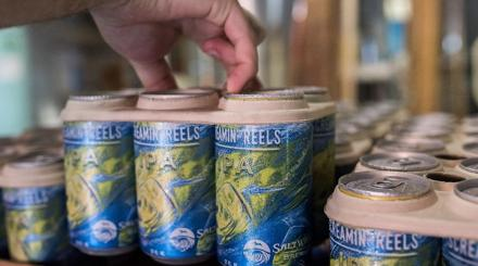 Saltwater IPAs and eco six pack holders