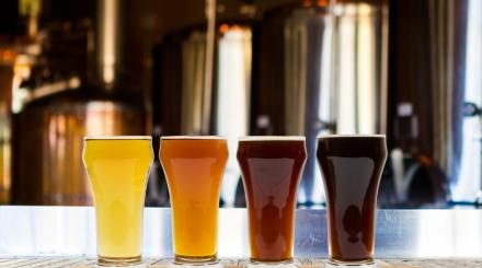 Four kinds of beer in glasses