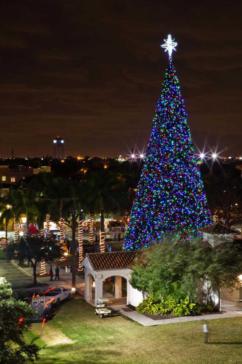 Delray Beach's 100 foot Christmas tree
