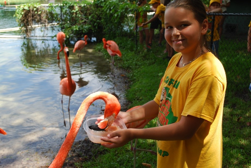 Chica con un Flamingo en Lion Country Safari