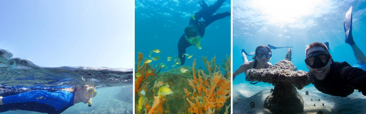 Snorkeling Sites The Palm Beaches Florida - The snorkeling guide to florida 10 spots for underwater exploring