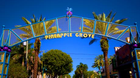 Delray Beach Pineapple Grove