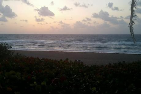 Intracoastal Park - Oceanview from the beach