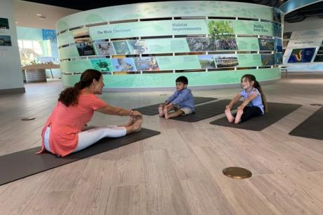 Mindful Moments: Kids Yoga at Manatee Lagoon
