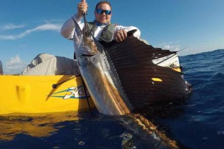 Sailfish From Kayak
