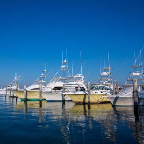 Sailfish Marina - Palm Beach