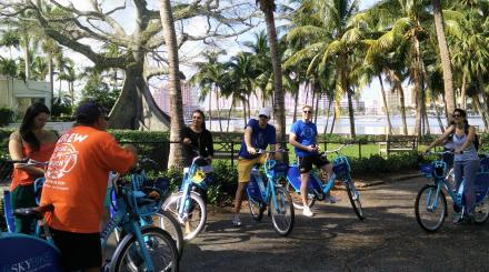 A guided bicycle tour of Palm Beach is a treat.