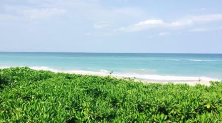 Beach in Juno Beach, Florida