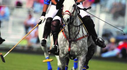 Polo is a long time favorite in The Palm Beaches