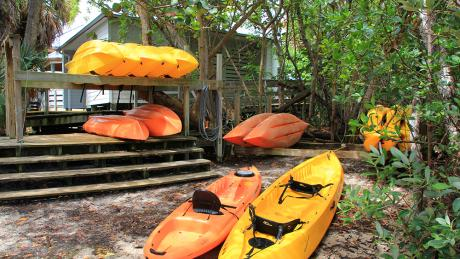 Guide To Water Sports In Florida Discover The Palm Beaches