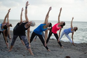 Off The Mat Yoga In Florida Discover The Palm Beaches